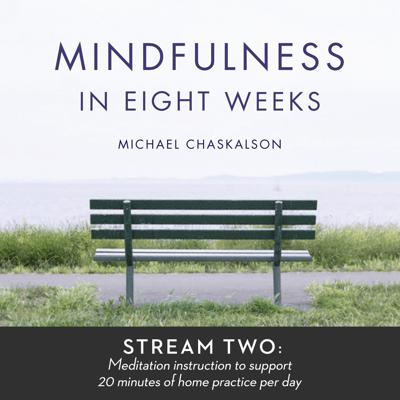 Mindfulness of Breathing (10-minute Version)