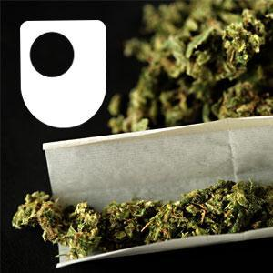 Cannabis, Consciousness and the Imagination - for iPad/Mac/PC