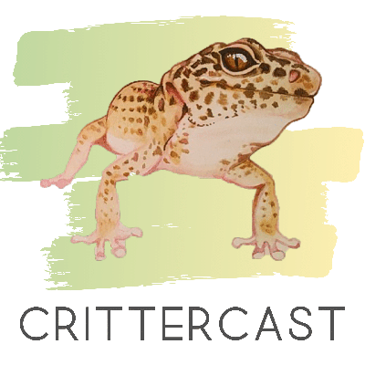 A Podcast for the Love of Animals