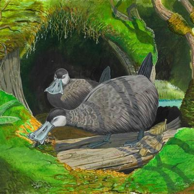 Cover art for Recreating the Lost Worlds of the Past: From the Mauritius Dodo to the Blind Duck of Hawaiʿi