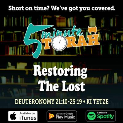 Cover art for Parashat Ki Tetze - Restoring The Lost