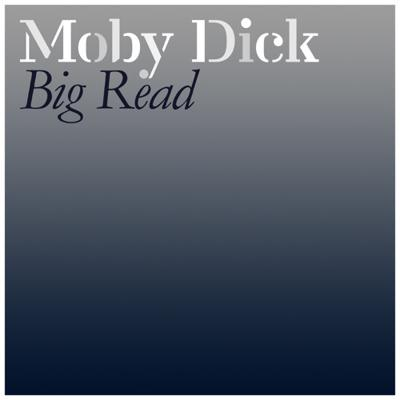 Cover art for Chapter 131: The Pequod Meets the Delight - Read by Daniel Allen - http://mobydickbigread.com