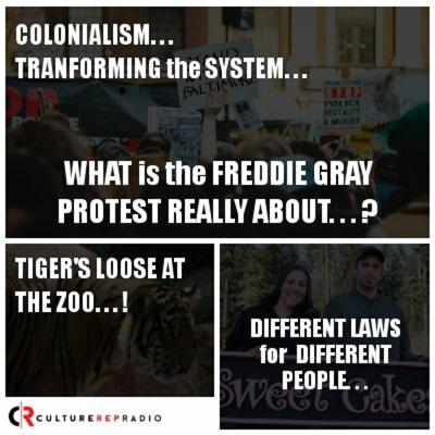 Cover art for What is the Freddie Gray Protest Really About...? We Have an Answer