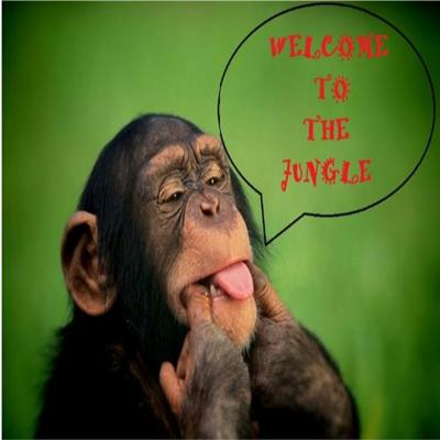 Cover art for Welcome To The Jungle Podcast Ep. 3
