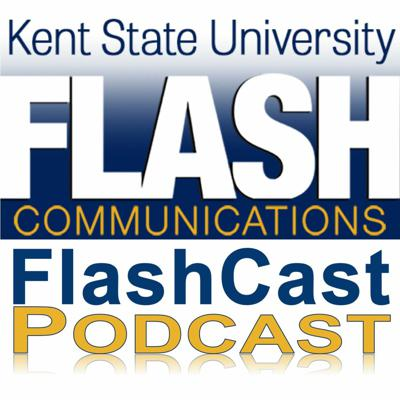 Cover art for FlashCast 14 - From the Internship Providers