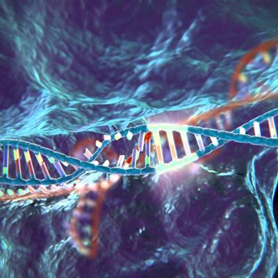 Cover art for CRISPR and Cas-9 - how gene editing may one day lead to a cure for cancer