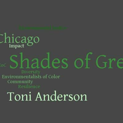 Cover art for Shades of Green Chicago Episode 7.2: Toni Anderson