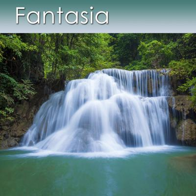 Cover art for Fantasia with the Rain