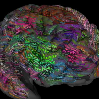 Cover art for The ambition Brain Atlas Project