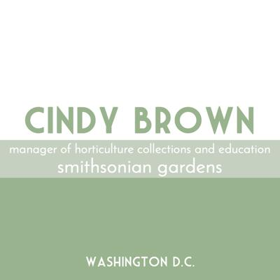 Cover art for Cindy Brown | Smithsonian Gardens