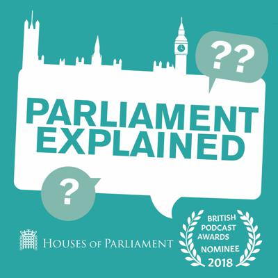 Cover art for Episode 2 - What Happens in Parliament?