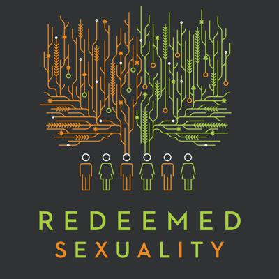 Cover art for What Is Sexual Brokenness?