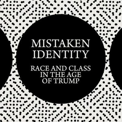 Cover art for TL4T #14 Interview w. Asad Haider: Mistaken Identity