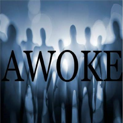 Cover art for AWOKE - The Hollywood Cabal