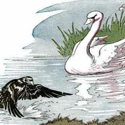 Cover art for A Raven and the Swan