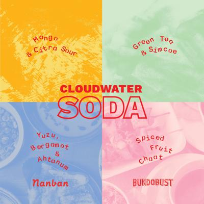 Cover art for Cloudwater Podcast Episode 3 - Dry January with Anja Madhvani