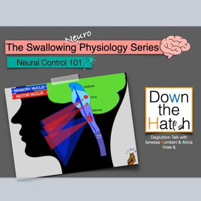 Cover art for Swallowing Neural Control: 101