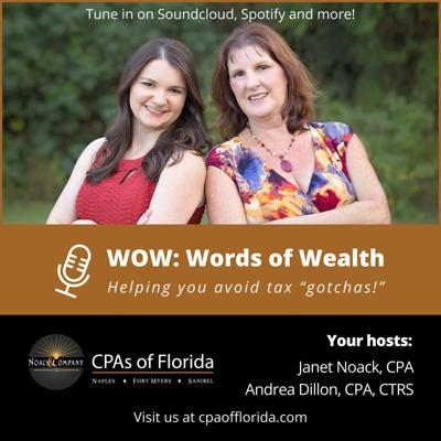 Cover art for CPAofFlorida WOW - ADA For Your Website - Do You Need It