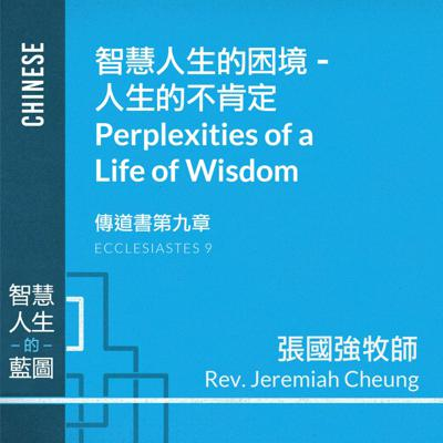 Cover art for 智慧人生的困境 –人生的不肯定 Perplexities of a Life of Wisdom