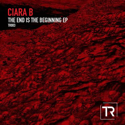 Cover art for The End is the Beginning