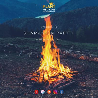 Cover art for # 46: SHAMANISM PART II
