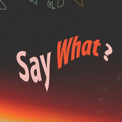 Cover art for Say What