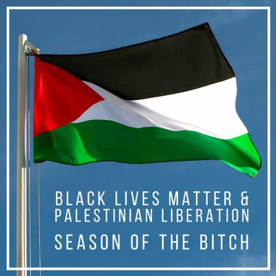 Cover art for Episode 139: BLM And Palestinian Liberation