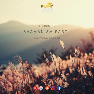 Cover art for # 45: SHAMANISM PART I