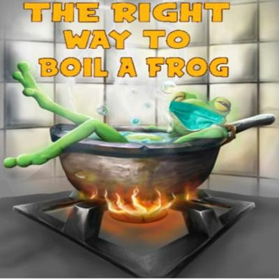 Cover art for 5/13/20: THE RIGHT WAY TO BOIL A FROG