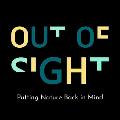 Out of Sight Stories