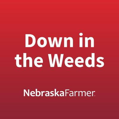 Down in the Weeds