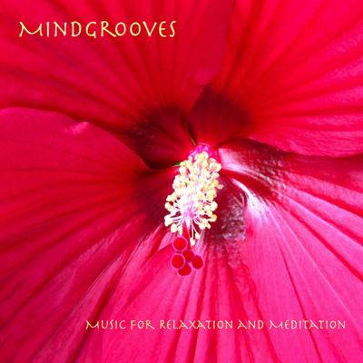 Music for Relaxation and Meditation.  Acoustic Instruments, Soft Grooves and Brainwave Entrainment to help you relax and meditate.
