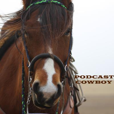 Podcast Cowboy