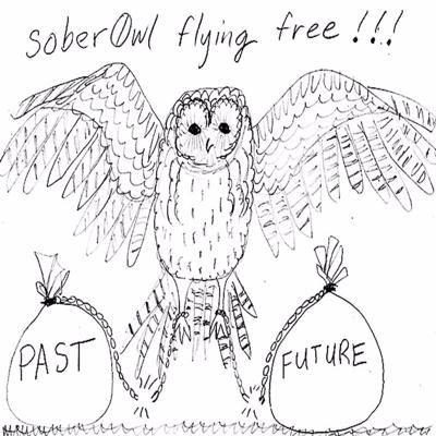 Sober0wl Flying Free