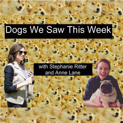 Just two girls reporting on all the Dogs We See Each Week. Email any questions at dogswesawthisweek@gmail dot com.