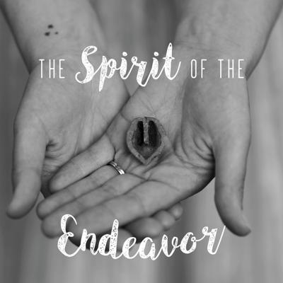 Spirit of the Endeavor