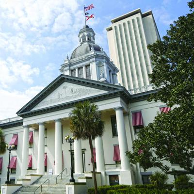 Sunshine on Issues: Reports from Tallahassee