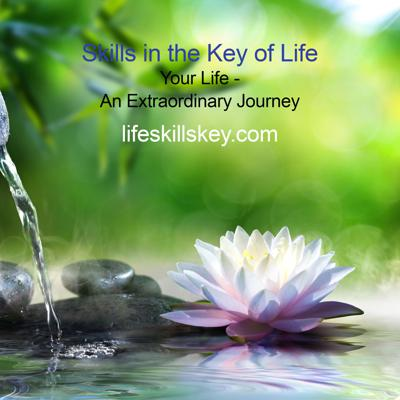 Skills in the Key of Life: Our Podcasts will share Insightful and Educational Discussions on Recovery and Life Issues.  How does anyone become great at something? The answer is with practice and guidance. Skills in the Key of Life will guide people entering, or currently in recovery, practice their recovery and life skills. LSK will guide them every step of the way, so that when life inevitably throws them a curveball, they will be prepared.    LSK will help you gain insight into why you are using right now, and take the pain and pathology around addiction and sobriety out of the equation. We help you understand your own life narrative, and through this shift in perspective your darkness and addiction can become the soil of your own growth and transformation.
