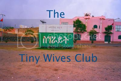 The Tiny Wives Club