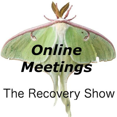 Cover art for Online meetings