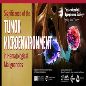 Significance of the Tumor Microenvironment in Hematological Malignancies