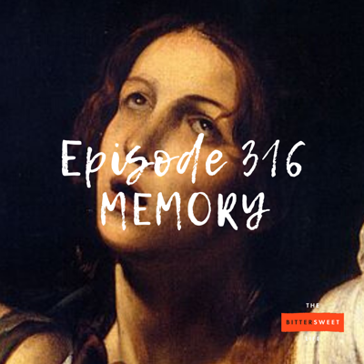 Cover art for Episode 316: The Nature of Memory (with Susan Engel)