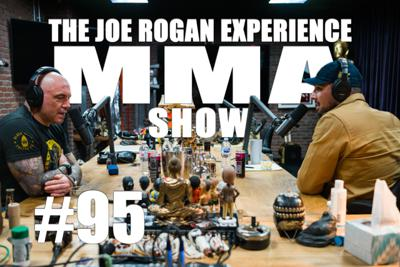 Cover art for JRE MMA Show #95 with Brendan Schaub