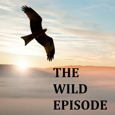 A Collection of Wonders, Curiosities and Occasionally Horrors from the Natural World. Zoology, natural history and sometimes human history too. Amazing stories about amazing wildlife.