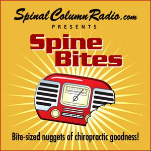 Spine Bites are snippets or