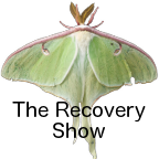 12-step recovery for those of us who love alcoholics or addicts. We share our experience, strength, and hope as we use the principles of the Al-Anon program in our lives. We talk openly and honestly about the problems and challenges as we face alcoholism and addiction in our friends and relatives. We share the tools and solutions we have found that let us live a life that is serene, happy, and free, even when the alcoholic or addict is still drinking or using.