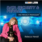 There are more information security and privacy threats than ever before. As more technologies emerge, more surveillance tactics are used, and more artificial intelligence systems are deployed, cybersecurity and privacy risks grow exponentially. Rebecca has spent her entire career working to improve information security and privacy protections, by not only raising awareness of the issues within businesses and other types of organizations, but also by raising the awareness of these risks in the public and helping them to understand how to better protect their own personal data, allowing them to take their privacy protections into their own hands. Rebecca offers information about these existing and emerging security and privacy risks and provides fresh insights into the impacts of exploiting these risks, and gives guidance, tips, expert advice and news, with fascinating guests, to help all organizations, and the general public, understand what they need to do to mitigate these risks.