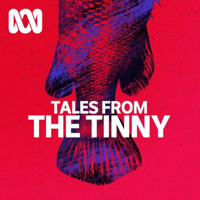 Tales from the Tinny