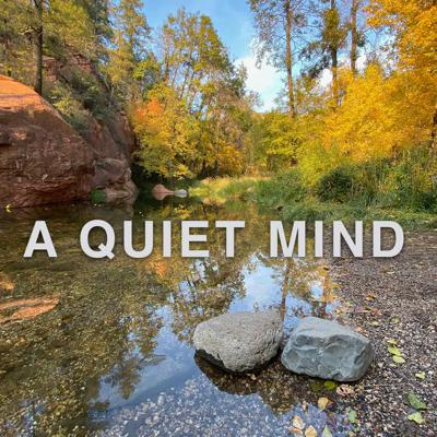Cover art for How Do I Quiet My Mind?