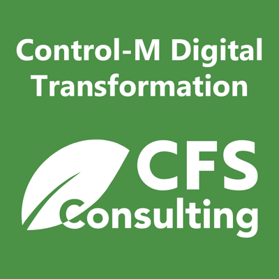 CFS Consulting